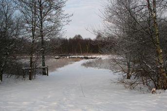 Landschaftsschutzgebiet Wymeer