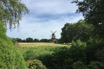 Holtlander Mühle