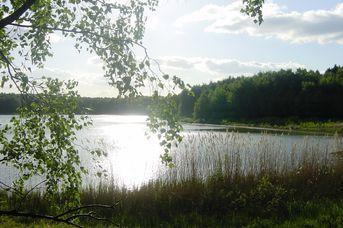 Nordic Walking Park Dammer Berge - Route 5 Bergseeroute
