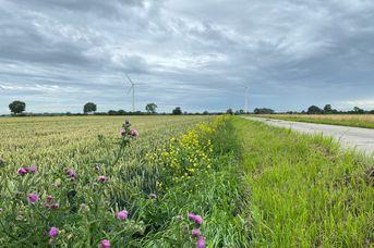 Rundtour entlang des Deiches und durch Moorhausen