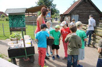 Fütterung der Tiere im Haustierpark