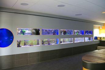 Nordsee Aquarium
