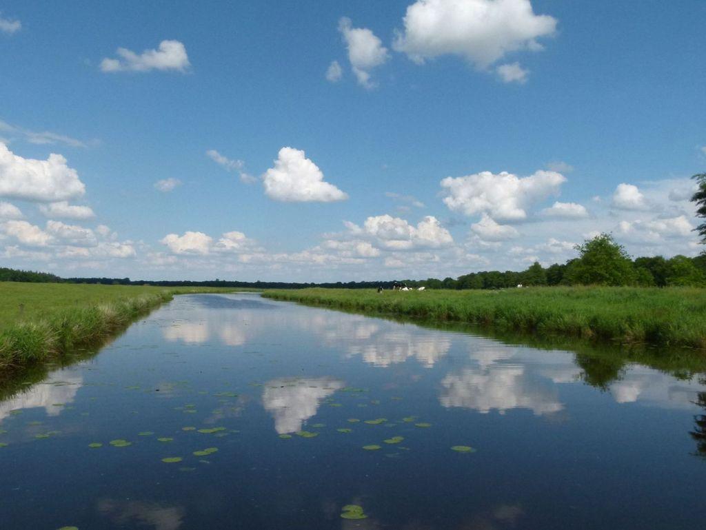 Ausblick auf die Jümme bei Filsum - Südliches Ostfriesland.