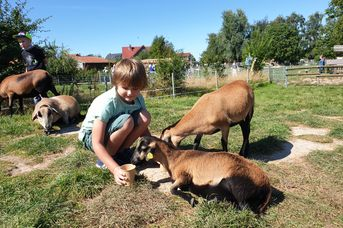 Haustierpark Werdum