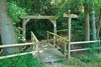 Nordic Walking Park Dammer Berge - Route 4 Dersaroute